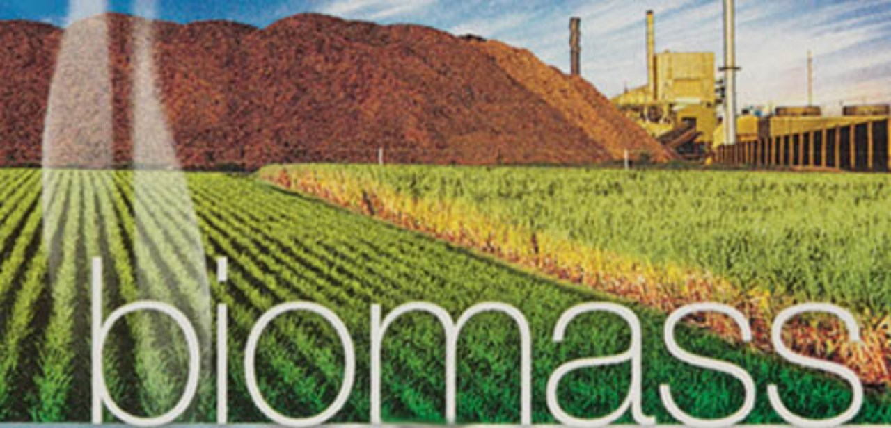Biomass Renewable Energy ~ Ccm eshare breaking news on china s agriculture
